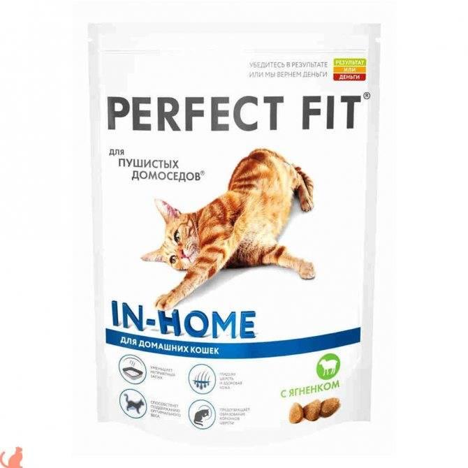 Перфект фит: корм для кошек, сухой и влажный