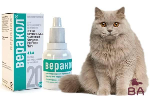 Инструкция по применению препарата для собак веракола