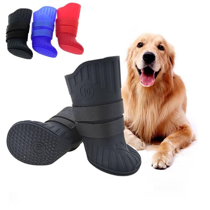 Обувь для собак: лучшие варианты для вашего любимца