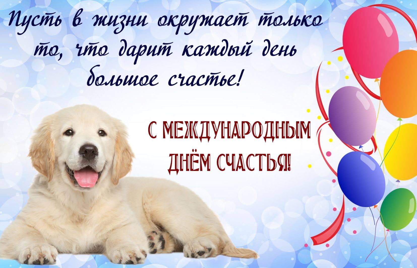30 ноября – всемирный день домашних животных