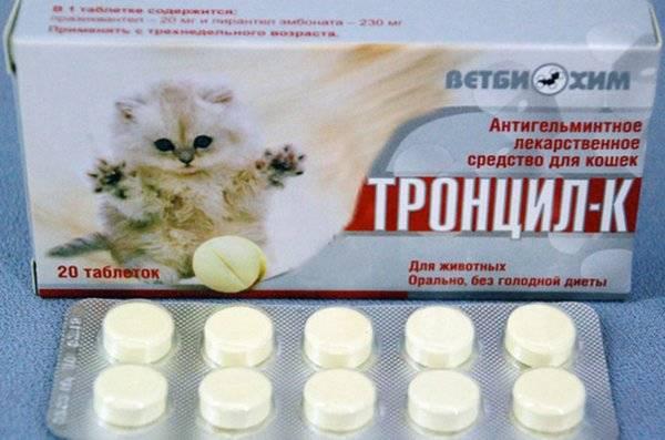 Как применять «мильбемакс» для котят и кошек