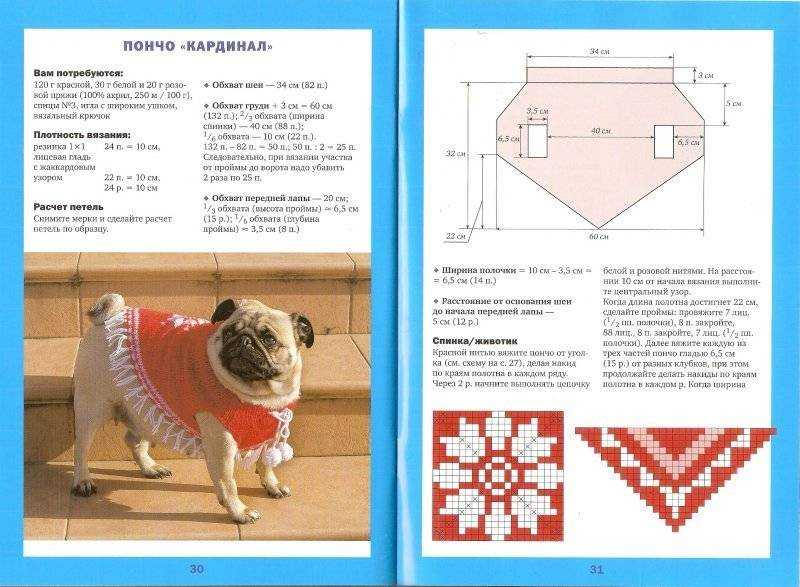 Схемы вязания свитера и комбинезона спицами для собак мелких пород