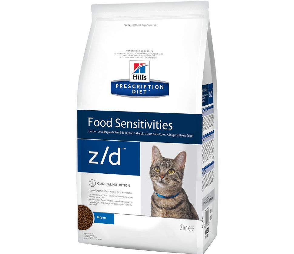 Мягкий корм для котят: какой влажный корм является лучшим? рейтинг производителей мокрых кормов. отзывы