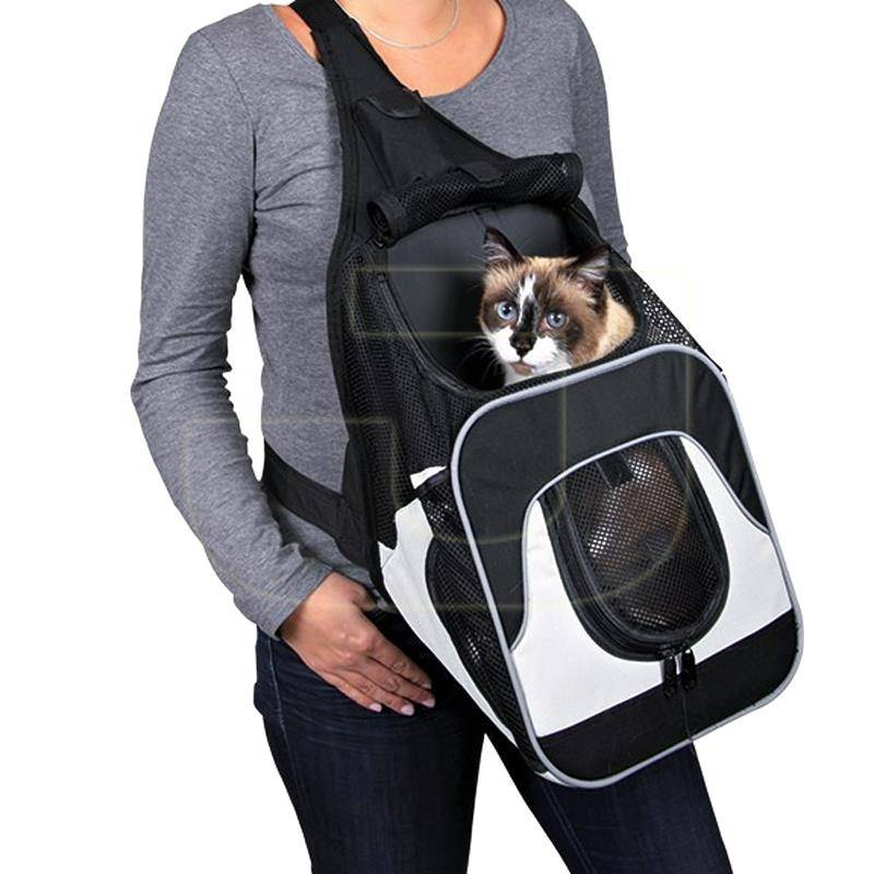 Переноска для кошек (51 фото): как сделать сумку-переноску для котят своими руками? как выбрать большую переноску? какие должны быть размеры клеток на колесах?