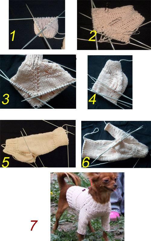 Выкройки одежды для собак маленьких пород: как сшить одежу (фото)