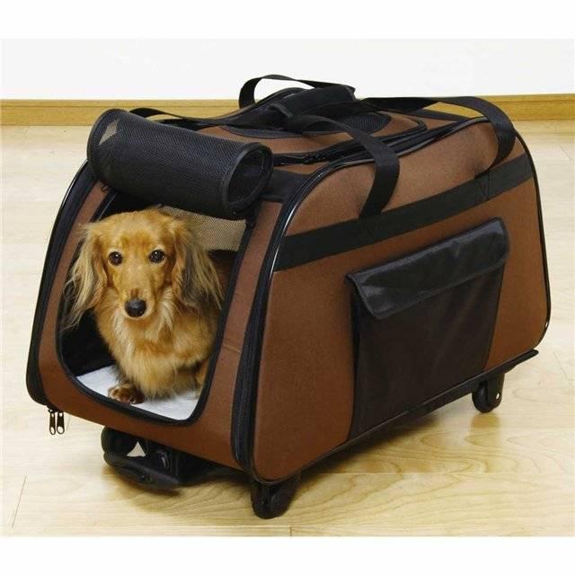 Как сшить сумку переноску для собаки своими руками