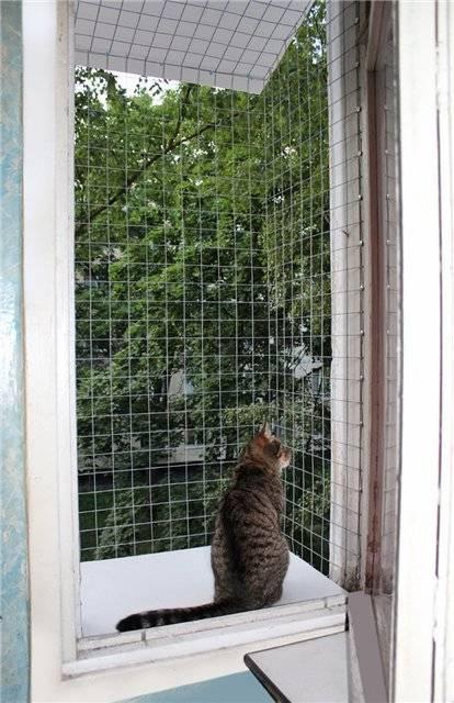 Сетки на окна антикошка своими руками - клуб мастеров