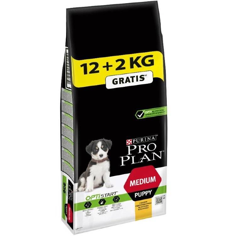Корм для щенков и крупных собак pro plan (про план): отзывы и состав