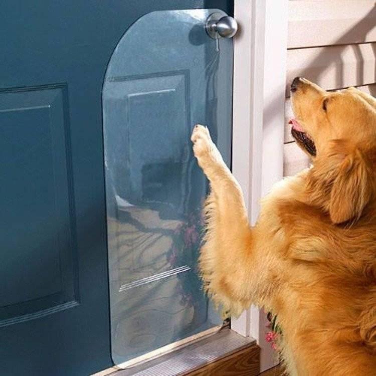 Что будет если не закрыть дверь холодильника. почему холодильник нельзя держать долго открытым