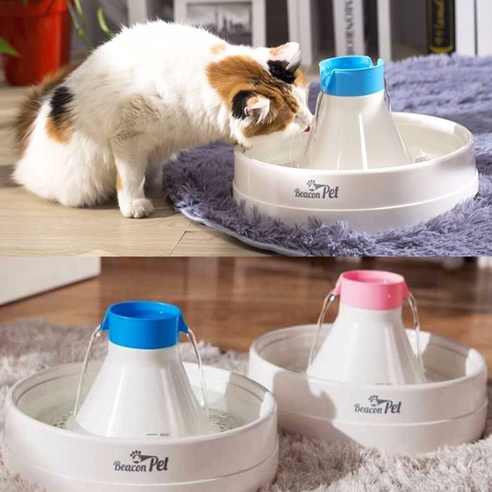 Поилки для кошек: виды, как выбрать, лучшие поилки, плюсы и минусы поилки для кошек: виды, как выбрать, лучшие поилки, плюсы и минусы