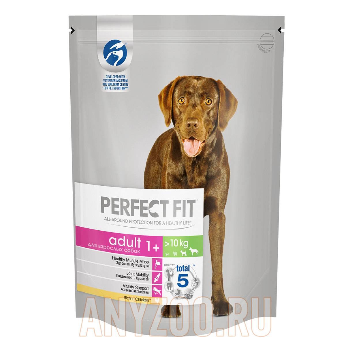 Корм для собак perfect fit — разбор состава и отзывы