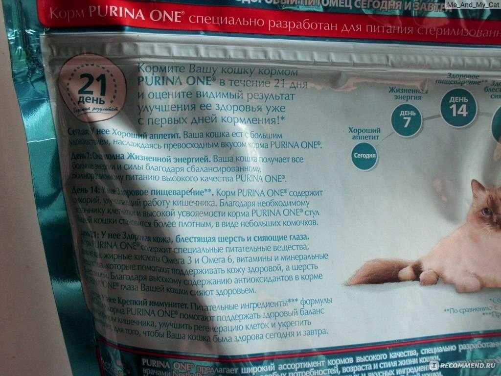 Можно ли давать обычный корм стерилизованной кошке и кастрированному коту и чем их кормить правильно