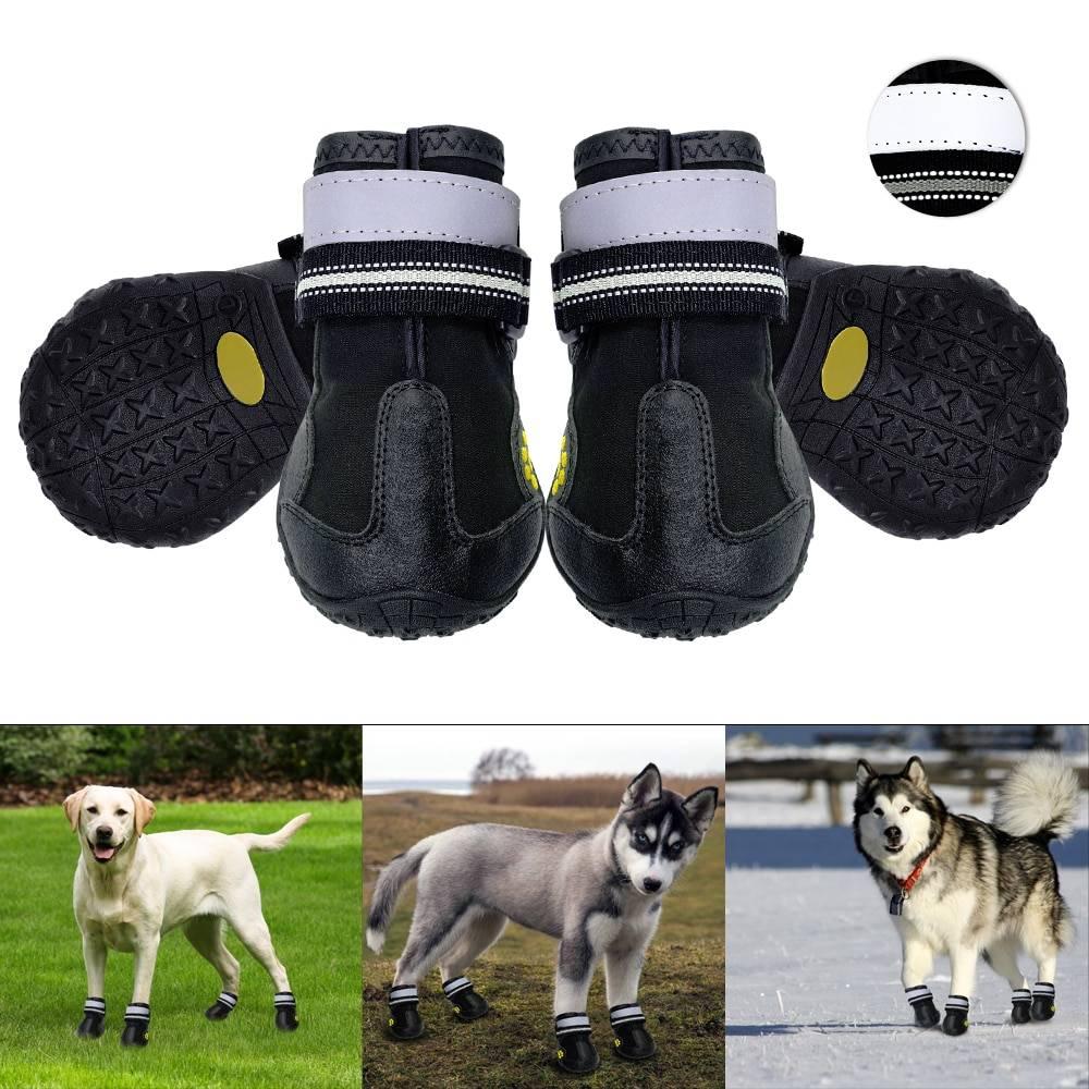Обувь для собак: ботинки для мелких и крупных пород