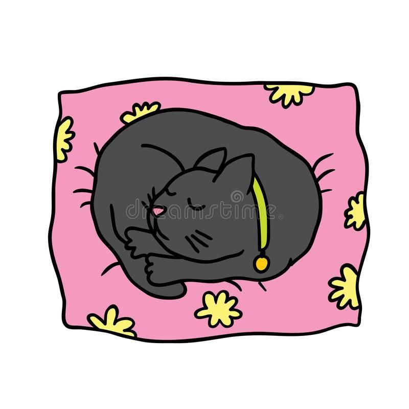 Приметы про сон кошки: на человека, в голове