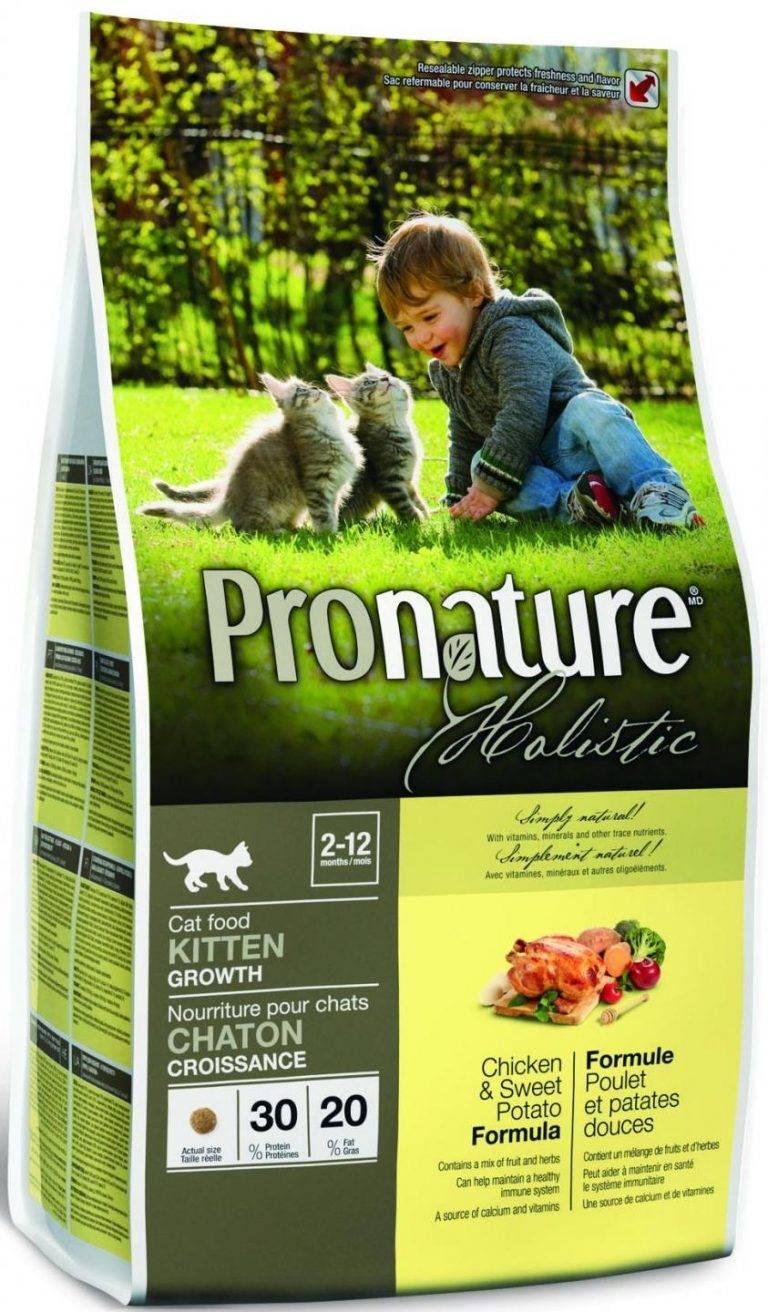 «пронатюр холистик» для кошек и котят: обзор корма и других линееек производителя