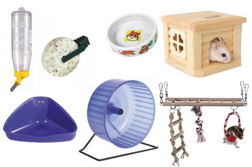 Поилка для хомяка (23 фото): как выбрать и как сделать поильник своими руками в домашних условиях? как установить его в клетку?