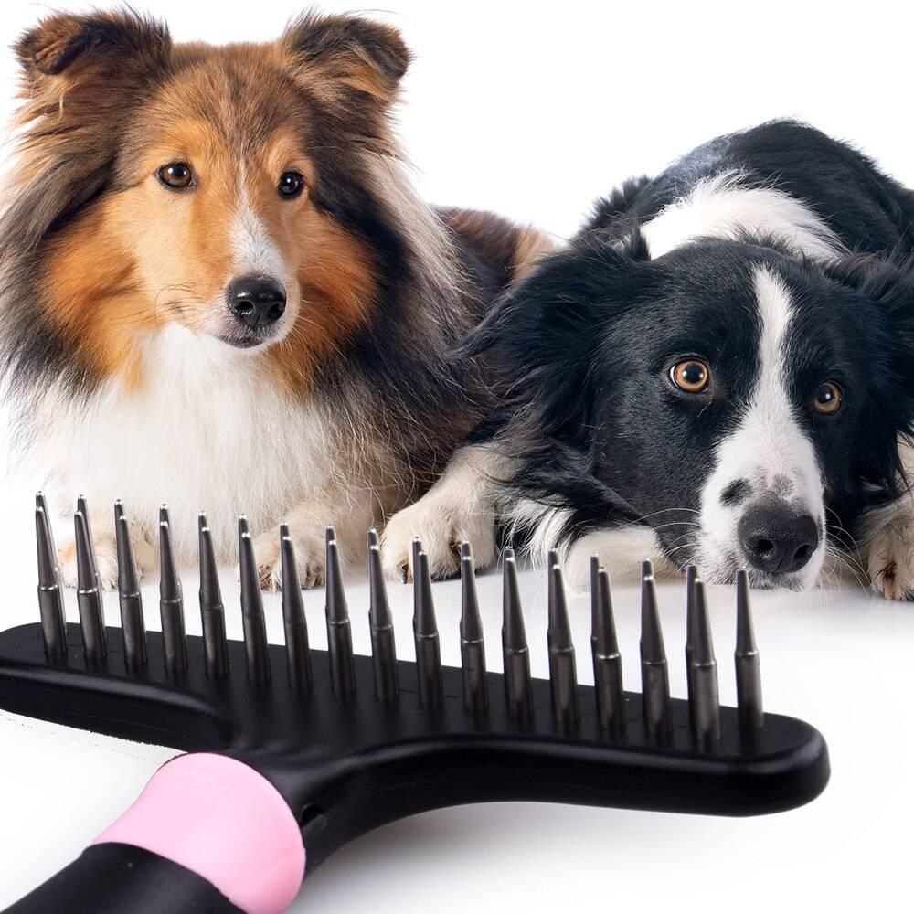 Правильный выбор: применение фурминатора для вычесывания собак вместо пуходерки — 4 лапки