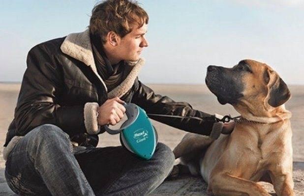 Советы, как выбрать поводок-рулетку для собак, flexi и другие производители