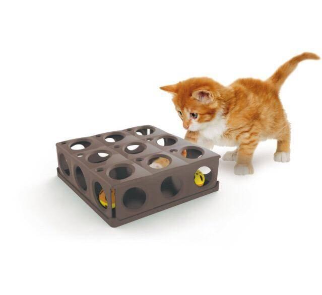 Самодельные игрушки для котят: обзор подручных материалов
