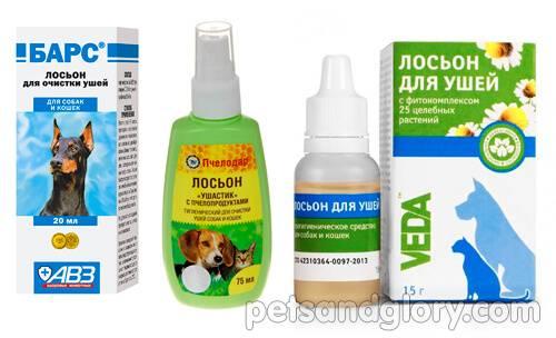 Как чистить уши собаке: 11 шагов (с иллюстрациями)