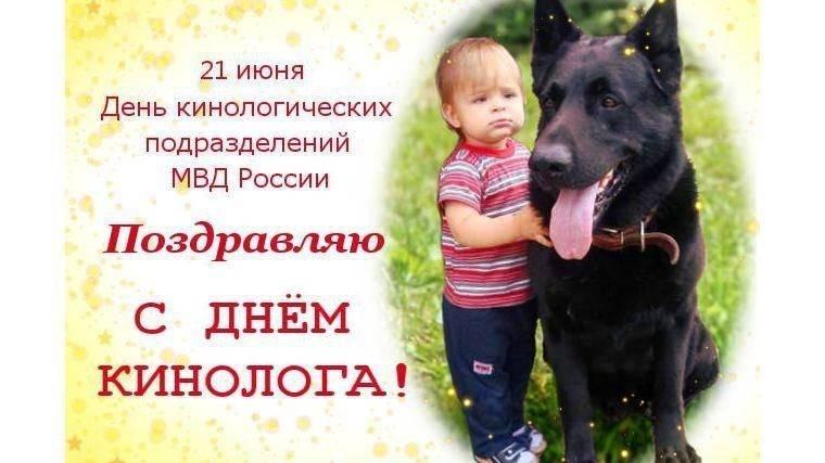 Всемирный день домашних животных, 30 ноября, картинки