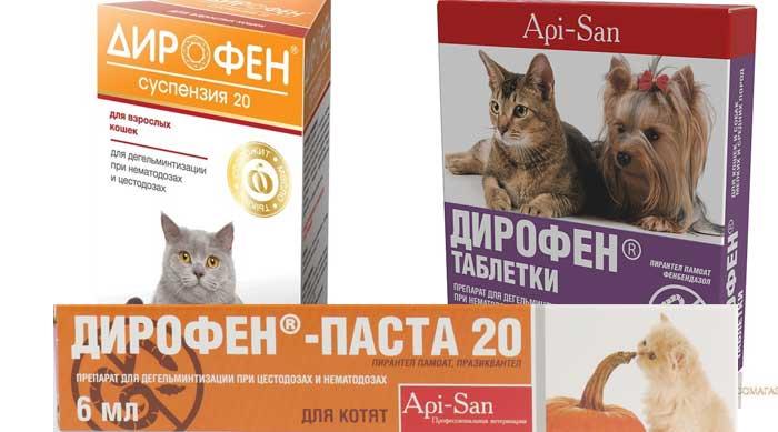 Дирофен для кошек – описание препарата и инструкция по применению