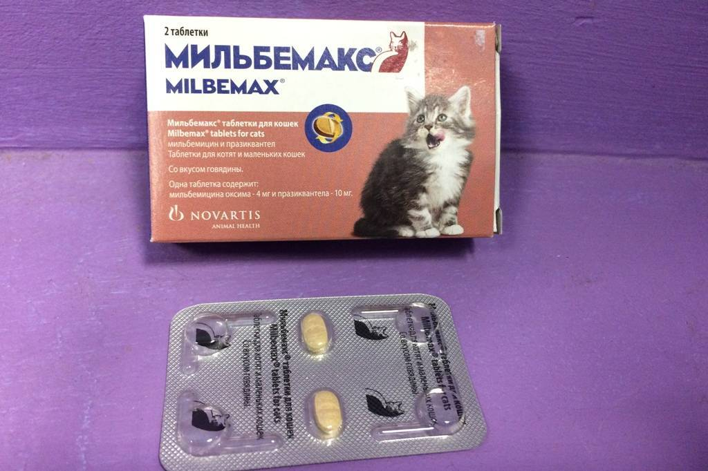 Мильбемакс таблетки для кошек - инструкция, cпособ применения, состав | zoozilla.org