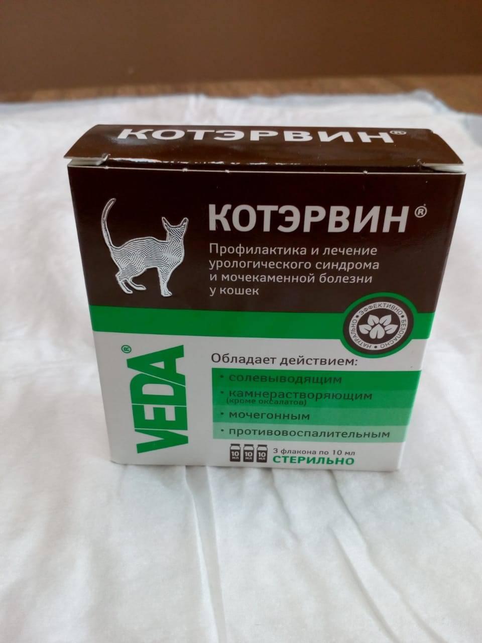 Инструкция по применению котэрвин для кошек: состав и форма выпуска, показания, аналоги и отзывы ветеринаров