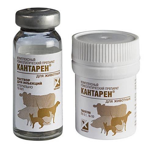 Инструкция по применению препарата кантарен для кошек