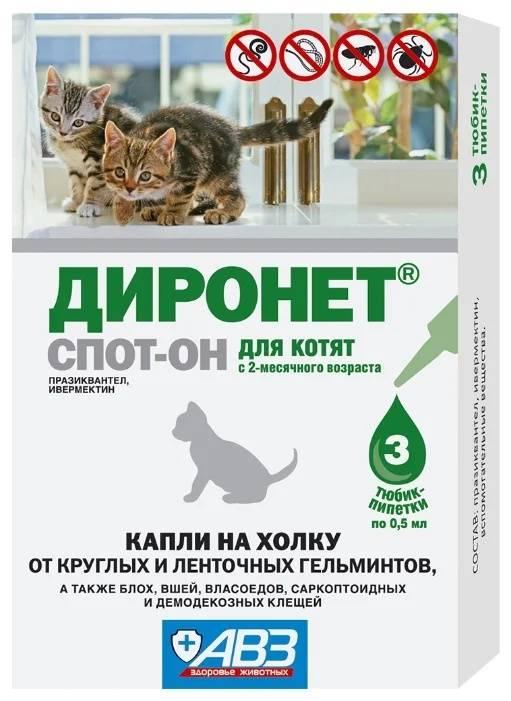 Диронет для кошек: инструкция и показания к применению, отзывы, цена