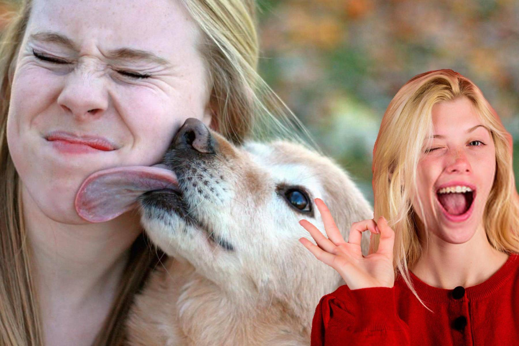 Почему собака вылизывает хозяина   человека, руки и ноги