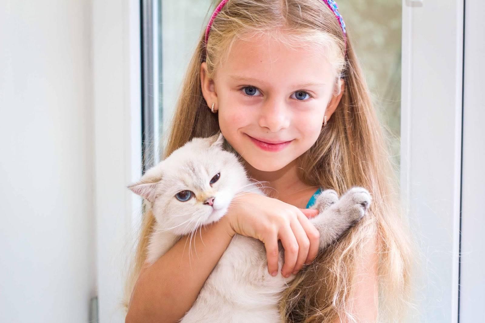 Как воспитывать кошку?