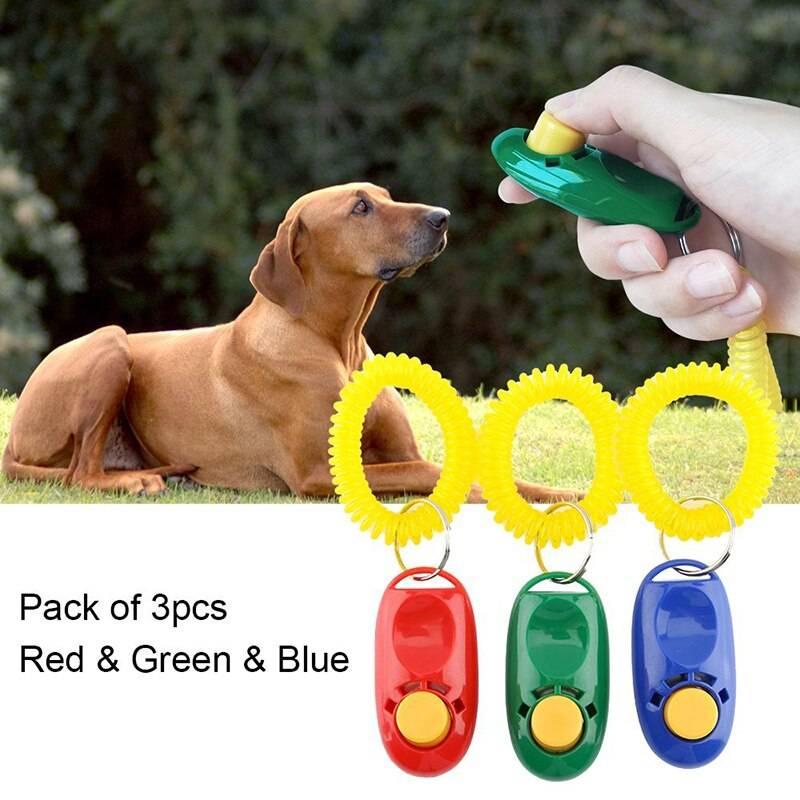 Дрессировка собаки с помощью кликера