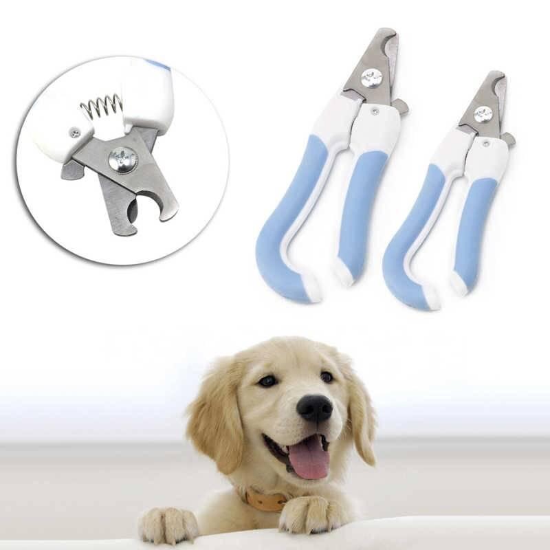 Как правильно стричь когти собаке в домашних условиях ножницами?