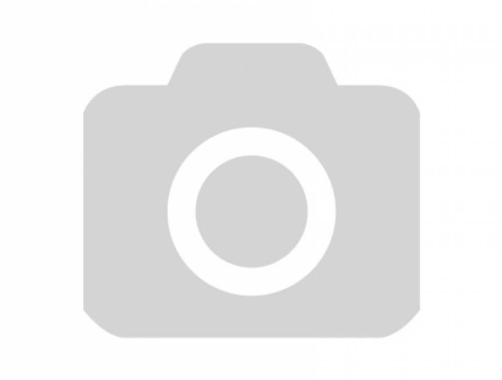 Клички собак (популярные имена кобелей и сук)   tvaryny