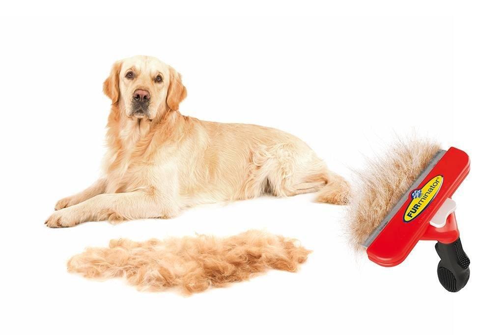 Расчески для вычесывания шерсти собак, для чего нужен и как выбрать фурминатор для собак