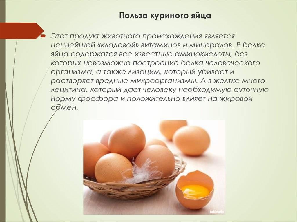 Подскажите какая скорлупа годна для удобрения только ли от сырых яиц? / асиенда.ру