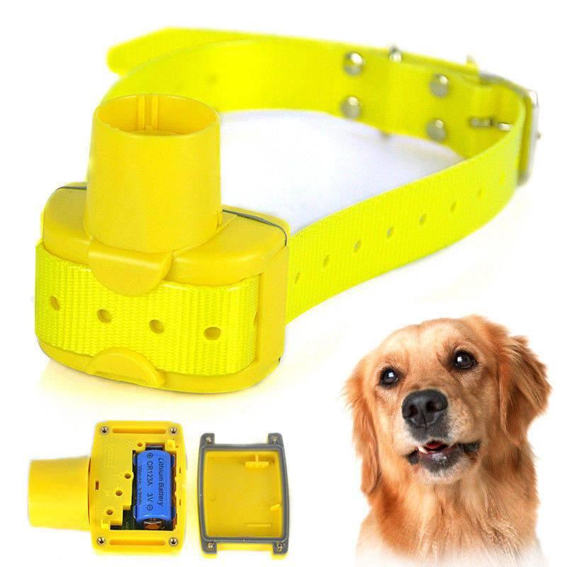 Топ-5 лучших ошейников с gps навигатором для собак