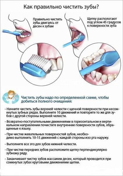 Все о зубной щетке: как чистят зубы в xxi веке