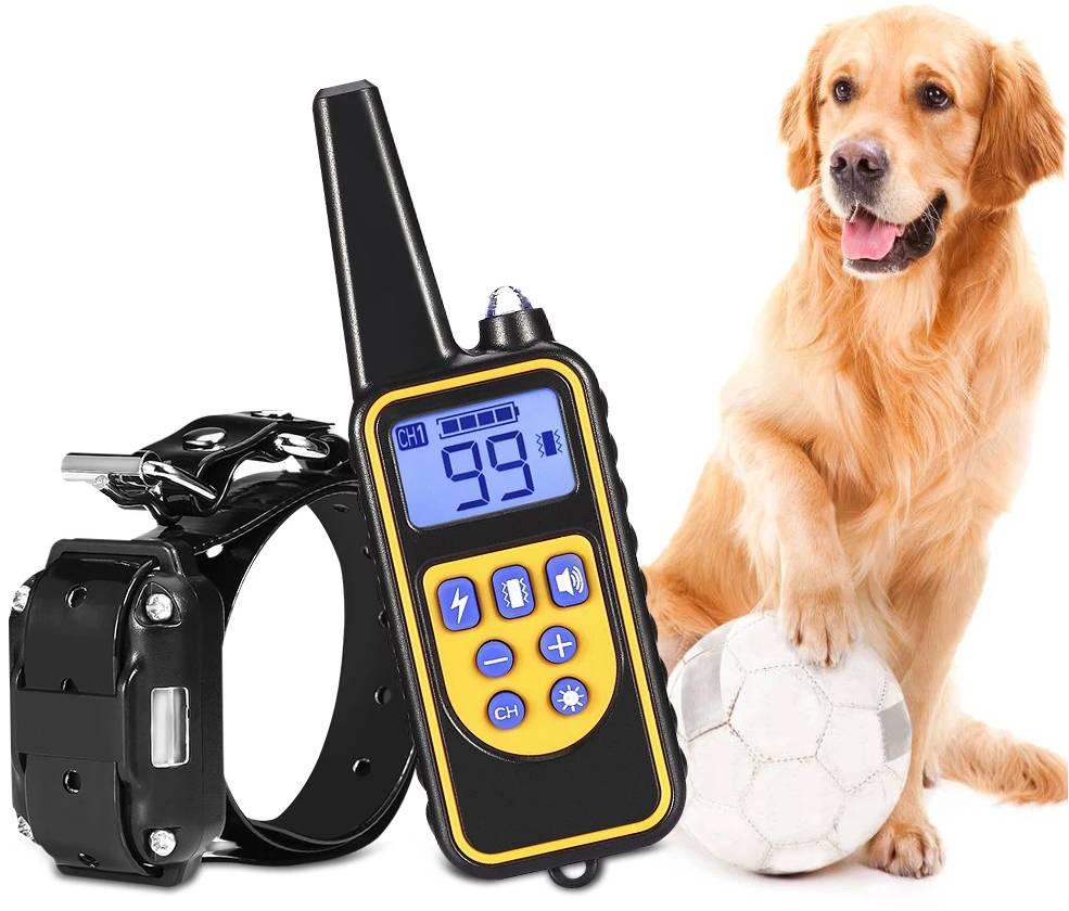 Что нужно знать про собачьи ошейники с электрошокерами: как ими пользоваться