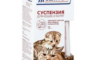 Прател для кошек: инструкция и показания к применению   отзывы, цена