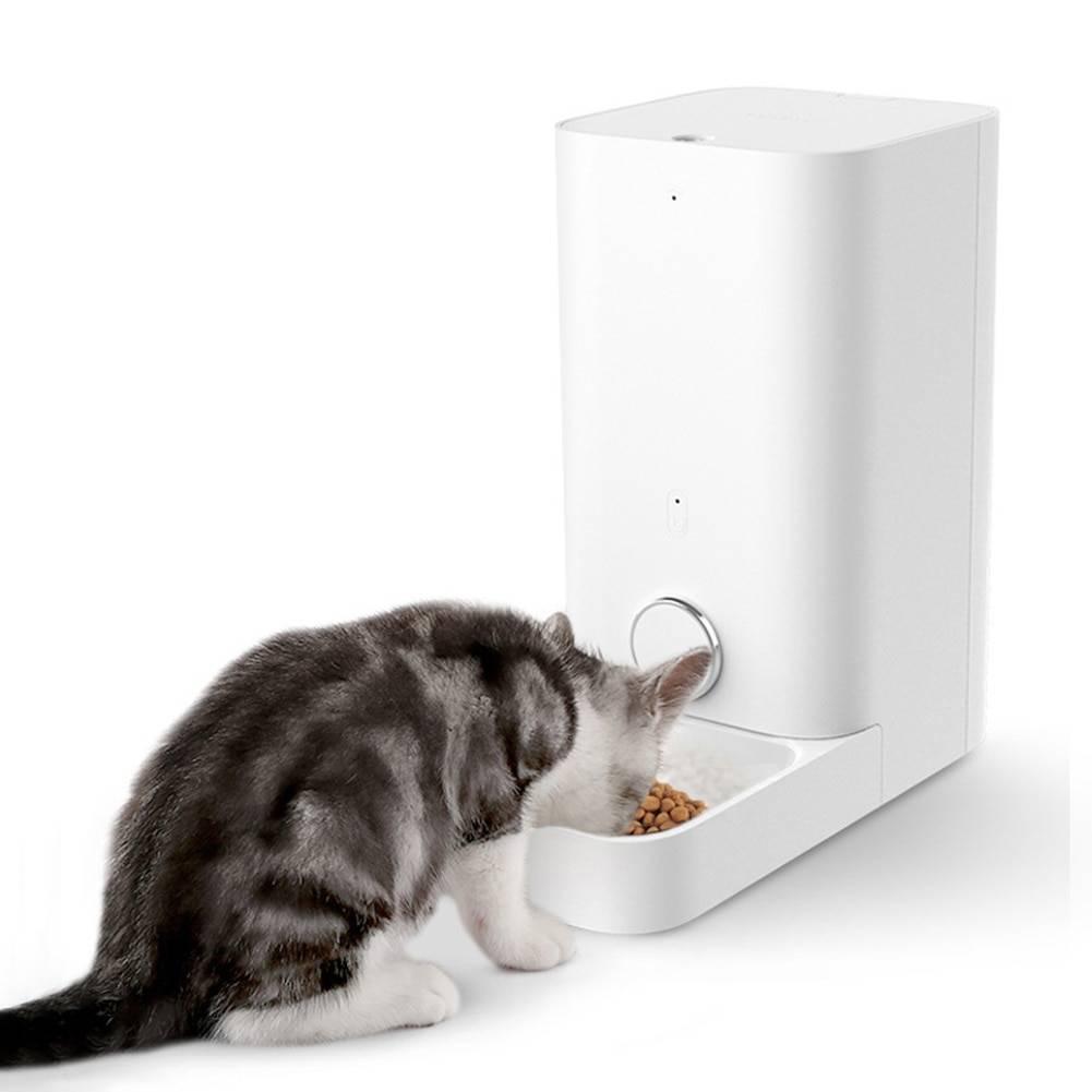 Атоматическая кормушка для кошек | настройка дозировки и советы по выбору аппарата (110 фото и видео)