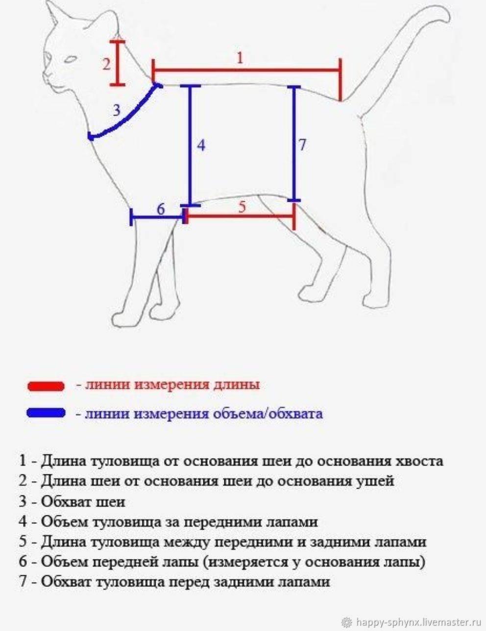 Как сшить кошку своими руками - пошаговое фото изготовления мартовского тильда котика. подборка схем и выкроек