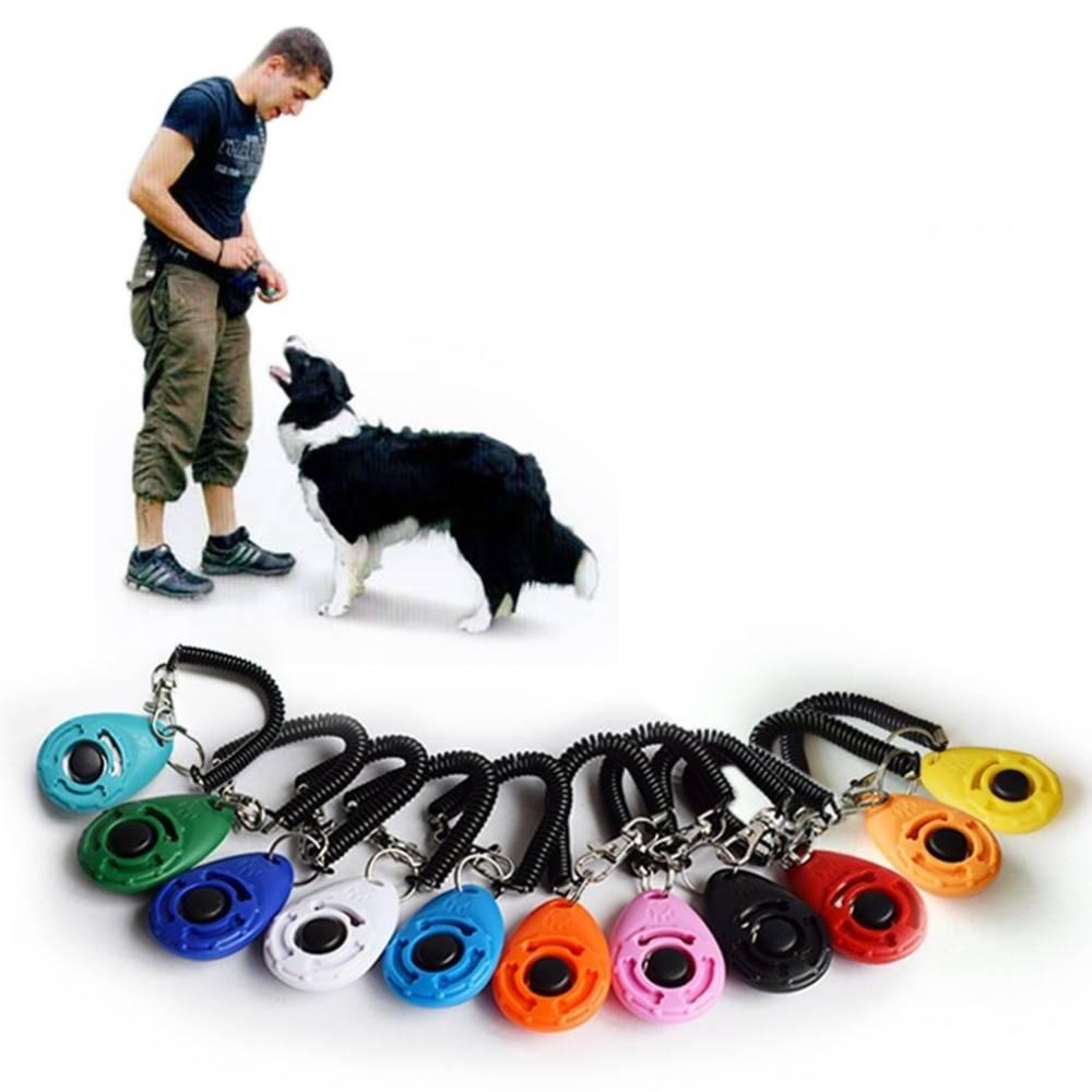 Кликер для собак: что это такое, как пользоваться, описание и возможные альтернативы