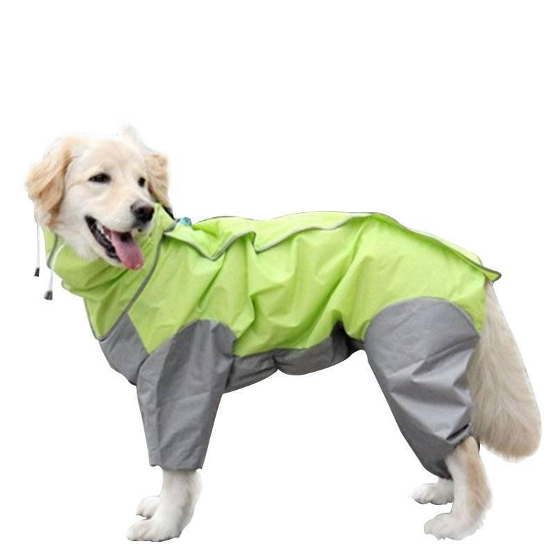 Рекомендации по выбору одежды для средних и маленьких пород собак