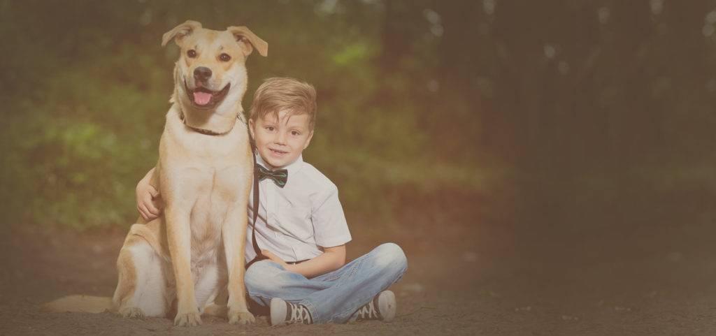 Как выпросить у родителей собаку, как уговорить маму завести щенка, способы и советы