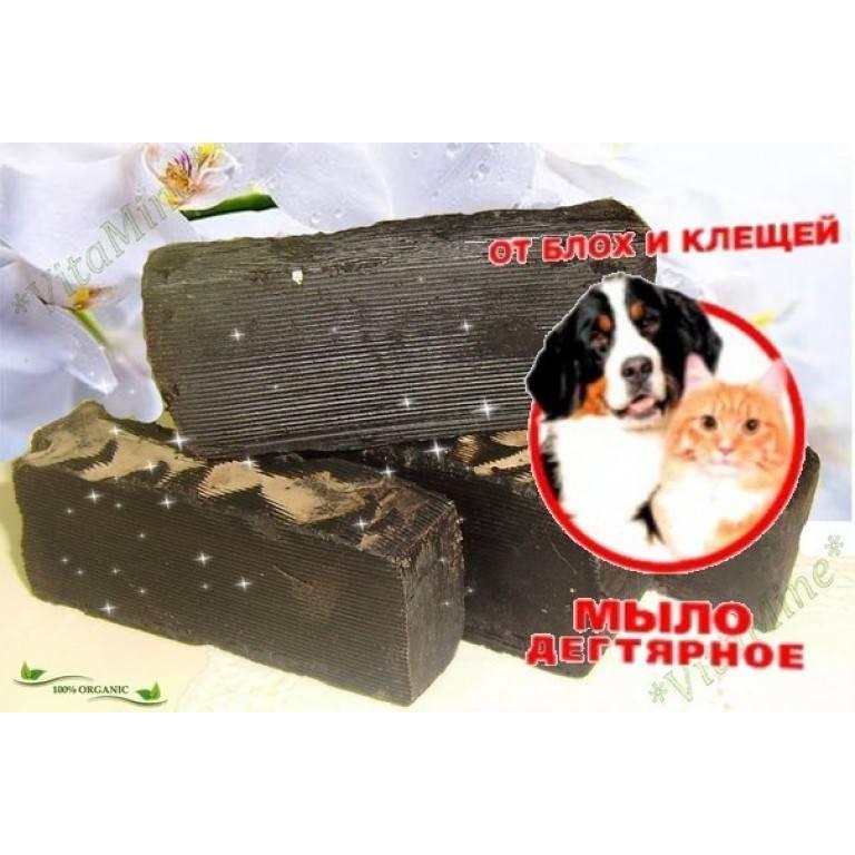 Дегтярное мыло от блох у кошек - эффективность, способ применения, меры предосторожности