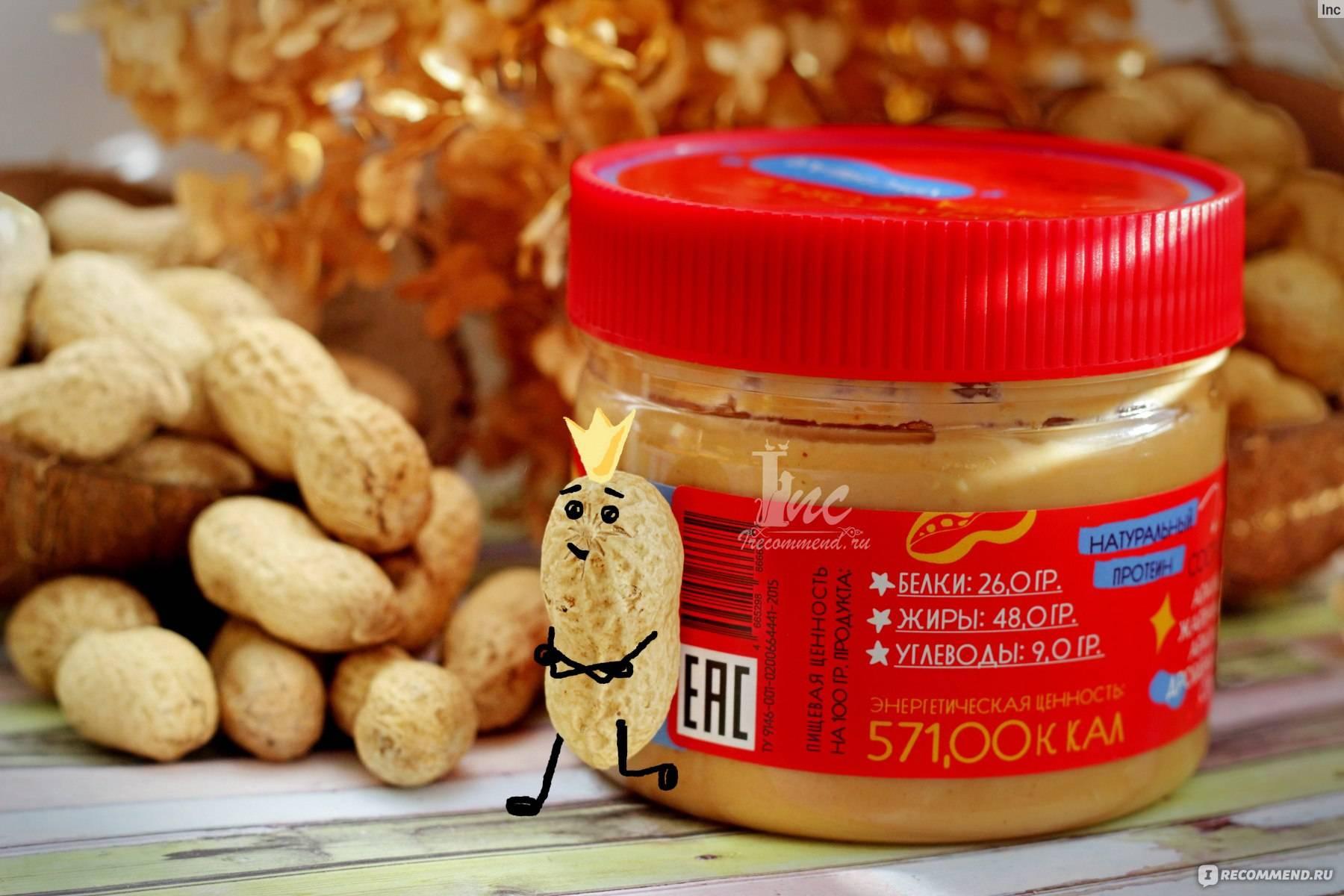 Можно ли собакам орехи фундук — про кур