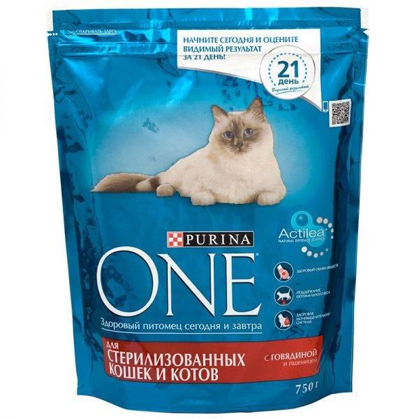 Рейтинг кормов для кошек 2020 (по качеству) - петобзор