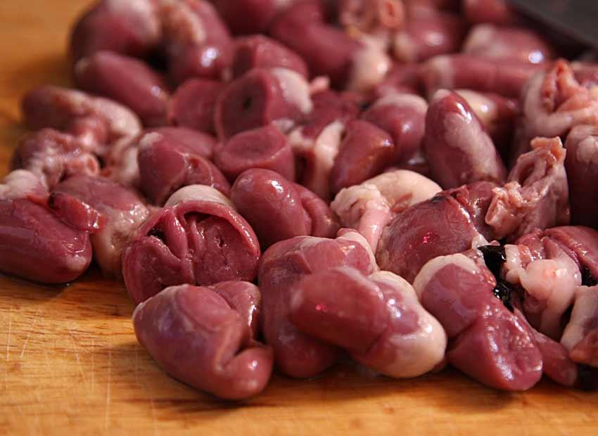 Кормление собак субпродуктами: продолжительность варки вымени, сердца и печени